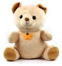 30 Dagen Teddybeer Kinderoppas Camera